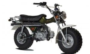 T-rex groen skyteam r4 moto's gent oost vlaanderen